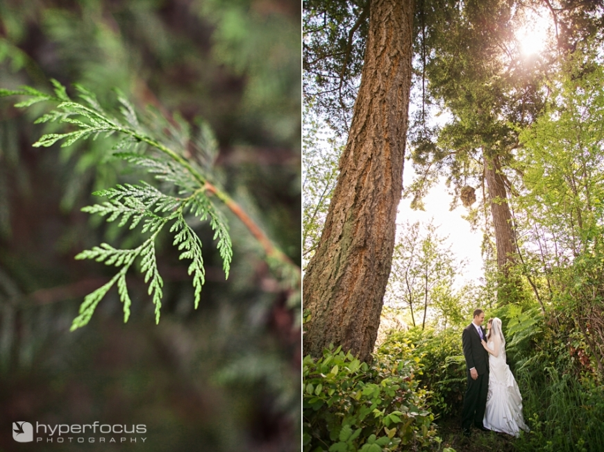 wedding_photographer_capilano_suspension_bridge__004