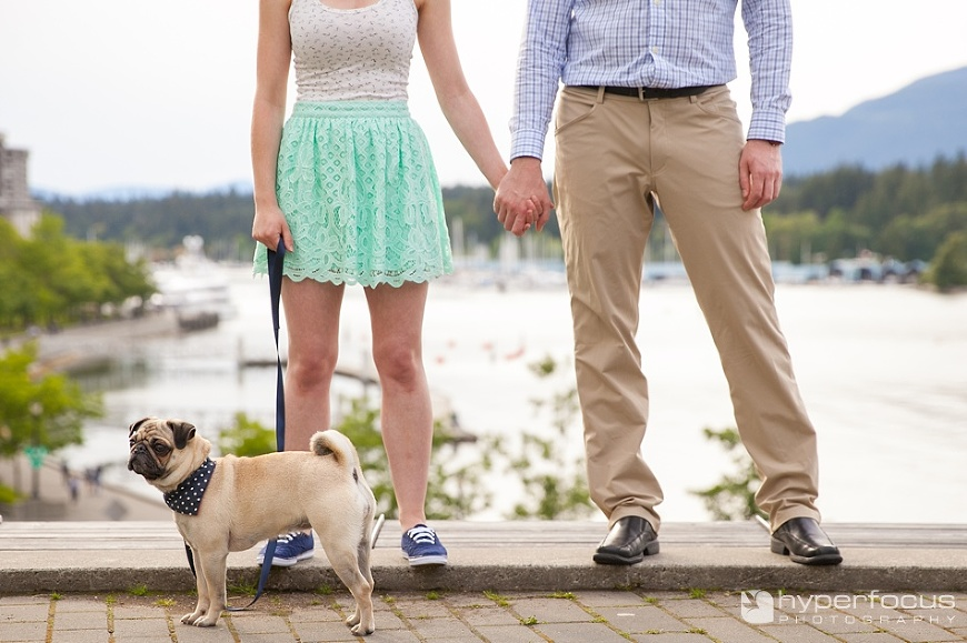 vancouver_engagement_photographer_Coal_Harbour_dog_01